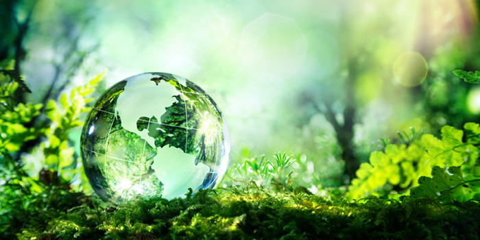 engagement_eco_responsable