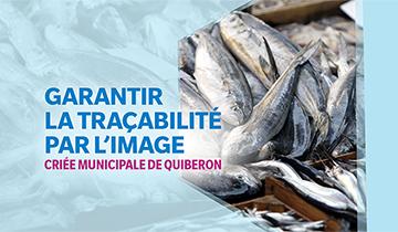 La Criée Municipale de Quiberon garantit la traçabilité par l'image